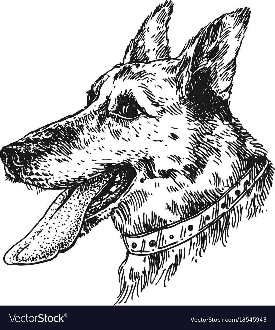 Hand Drawn Dog