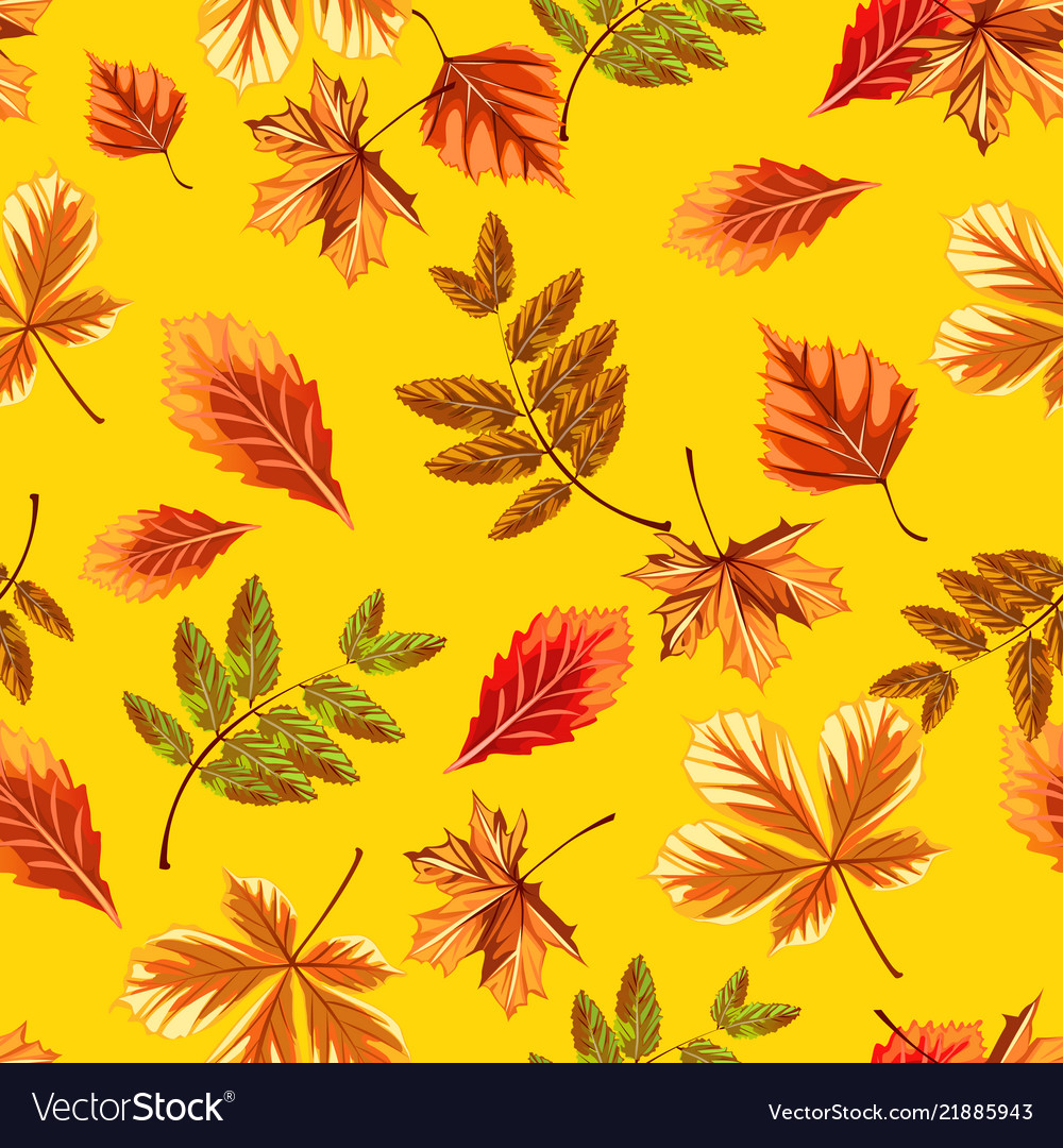 Texture of autumn tree leaves isolated on yellow