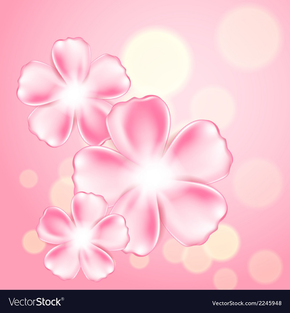 Beautiful pink flower background vector image