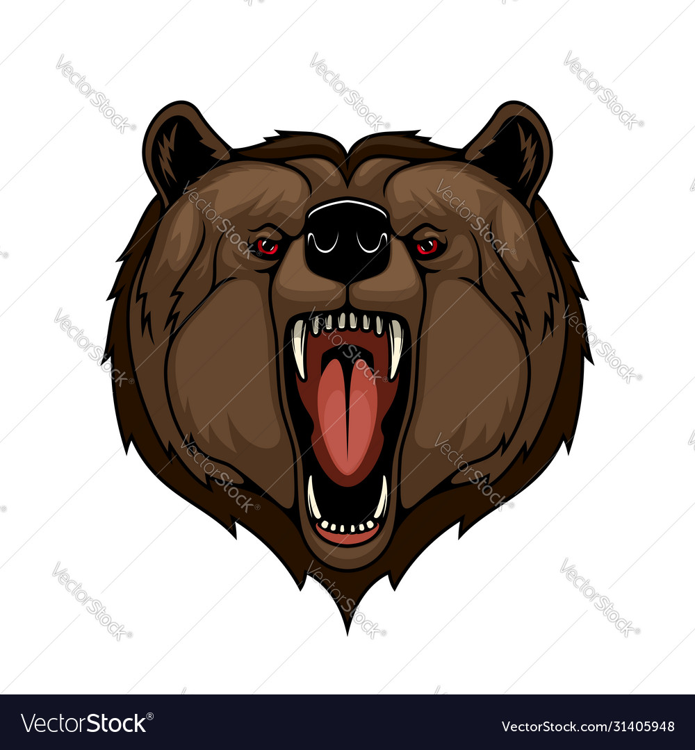 Grizzly bear head mascot isolated wild predator