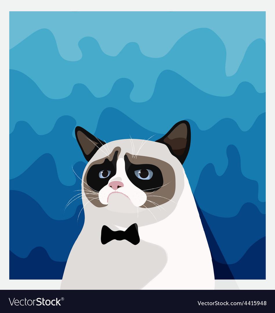 Grumpy Birman cat with black bow tie