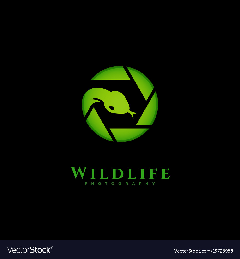 Wildlife Photography Logo Royalty Free Vector Image