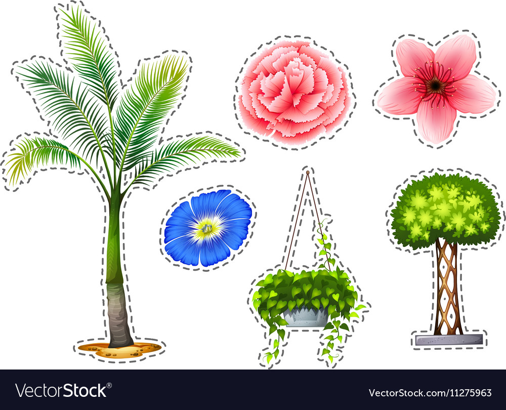 Sticker set with different kinds of plants vector image
