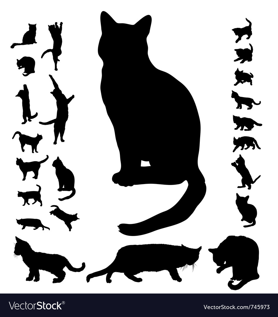 cat silhouette collection royalty free vector image rh vectorstock com halloween cat silhouette vector halloween cat silhouette vector
