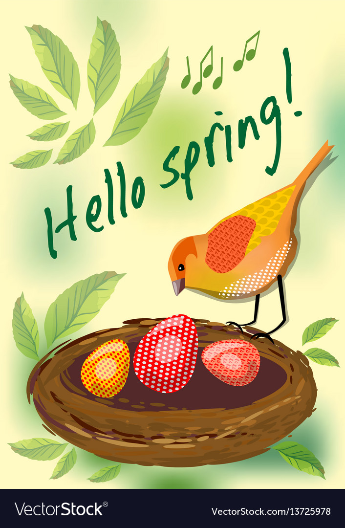 Hello spring cute card with colorful bird by nest