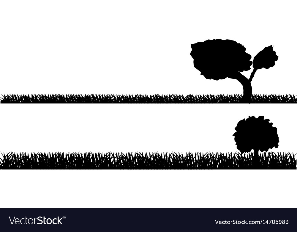 Seamless grass field grass pattern isolated on vector image