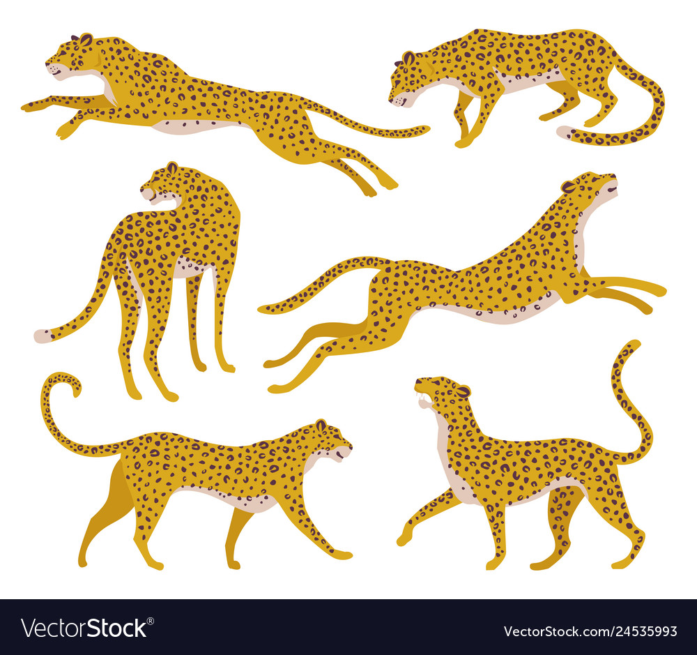 Set of abstract silhouettes of leopards