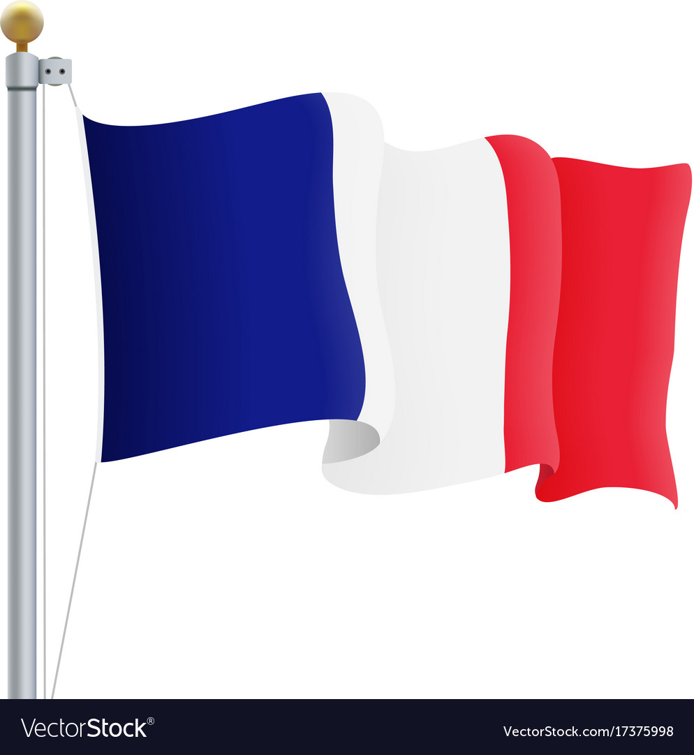 Waving france flag isolated on a white background vector image