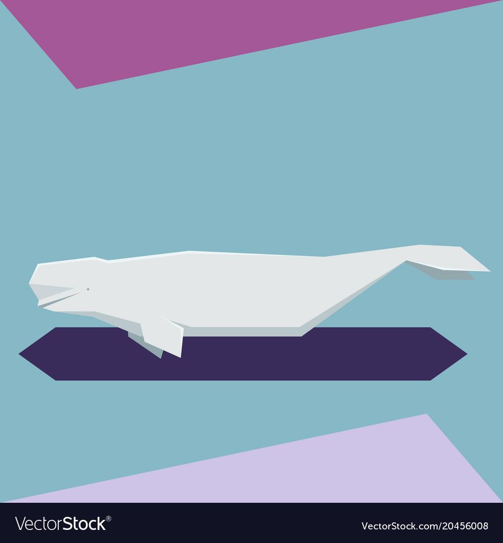 Flat design beluga whale