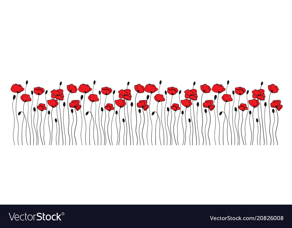 Poppy flowers and buds borders ornaments floral