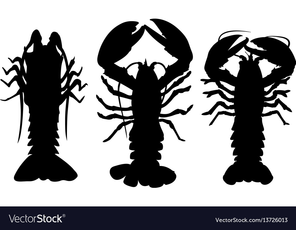 Different lobsters vector image