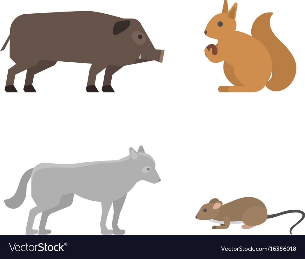 Different wild animals dangerous vertebrate canine vector image
