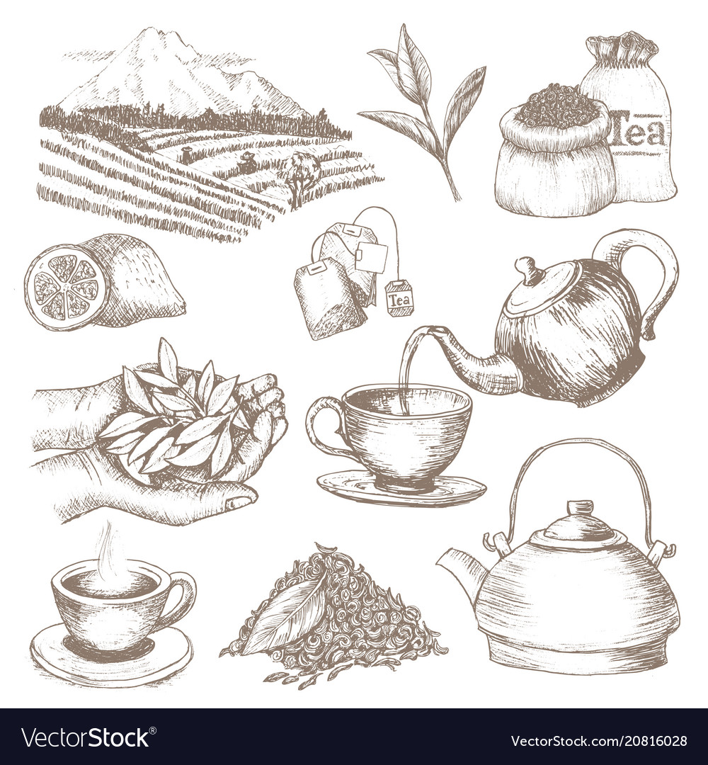 Tea drink herbal beverage with dry leaves