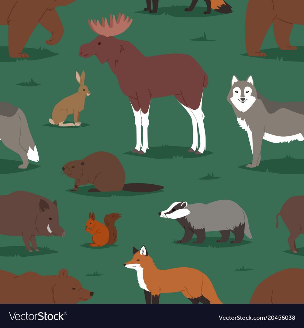 Forest animals cartoon animalistic vector image
