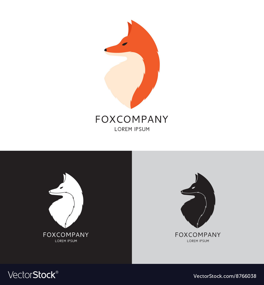 Template of fox vector image