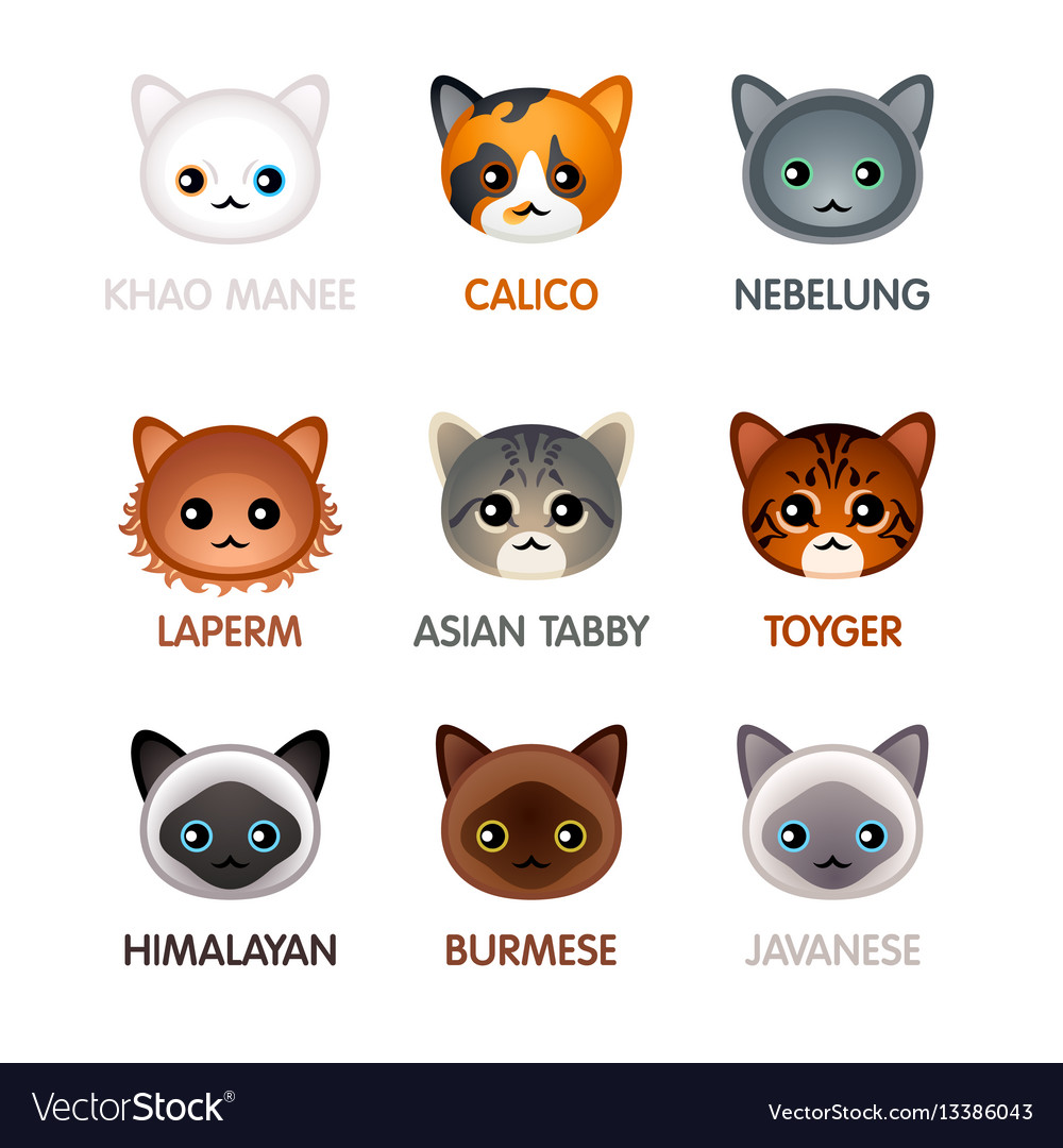Cute cat icons - set v vector image