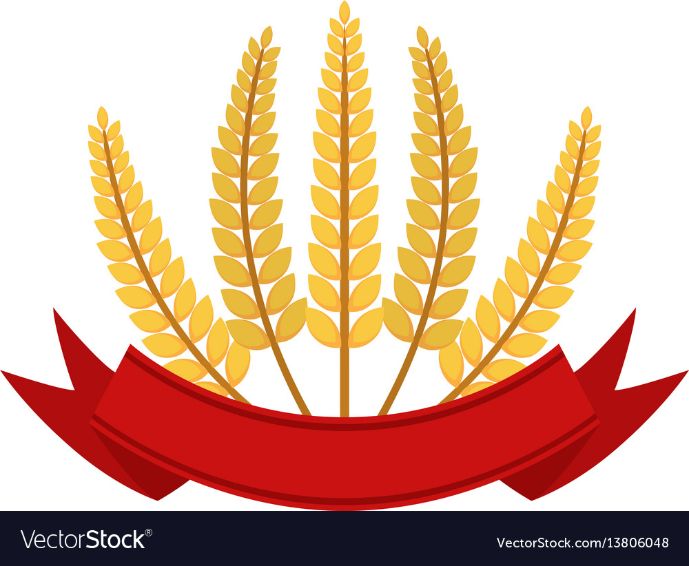 Bunch of wheat with ribbon frame flat style