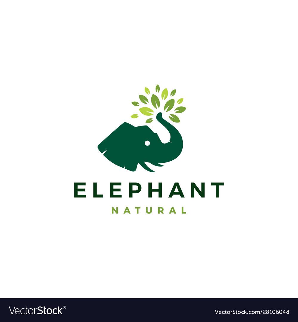 Elephant head leaf leaves tree logo icon