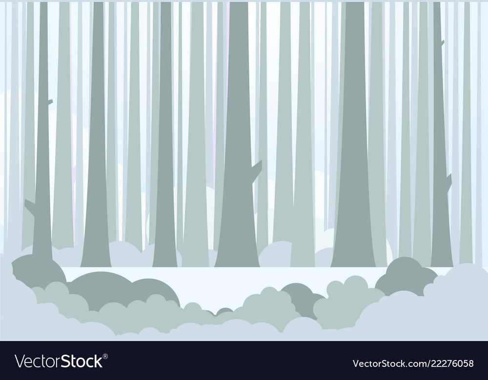 Big forest and meadow