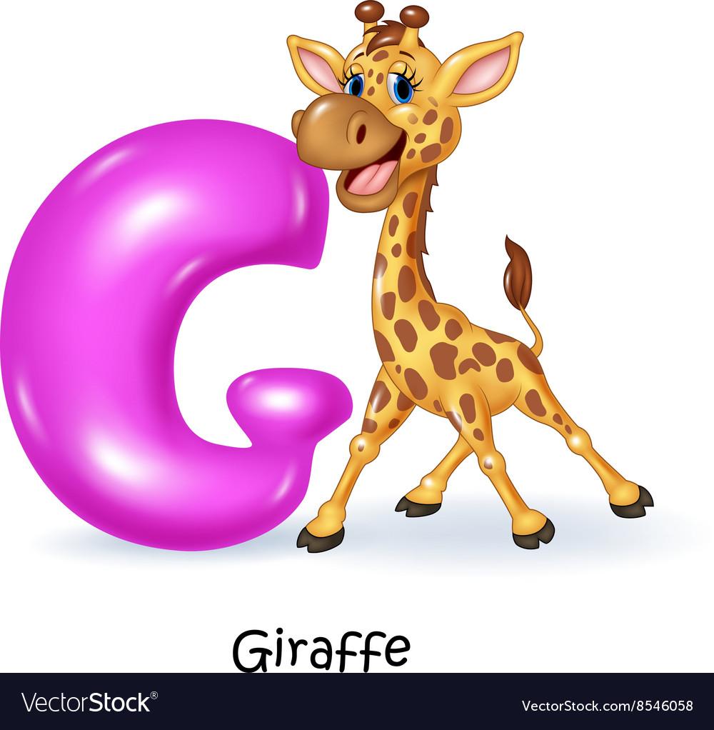 Cartoon of G letter for Giraffe Royalty Free Vector Image