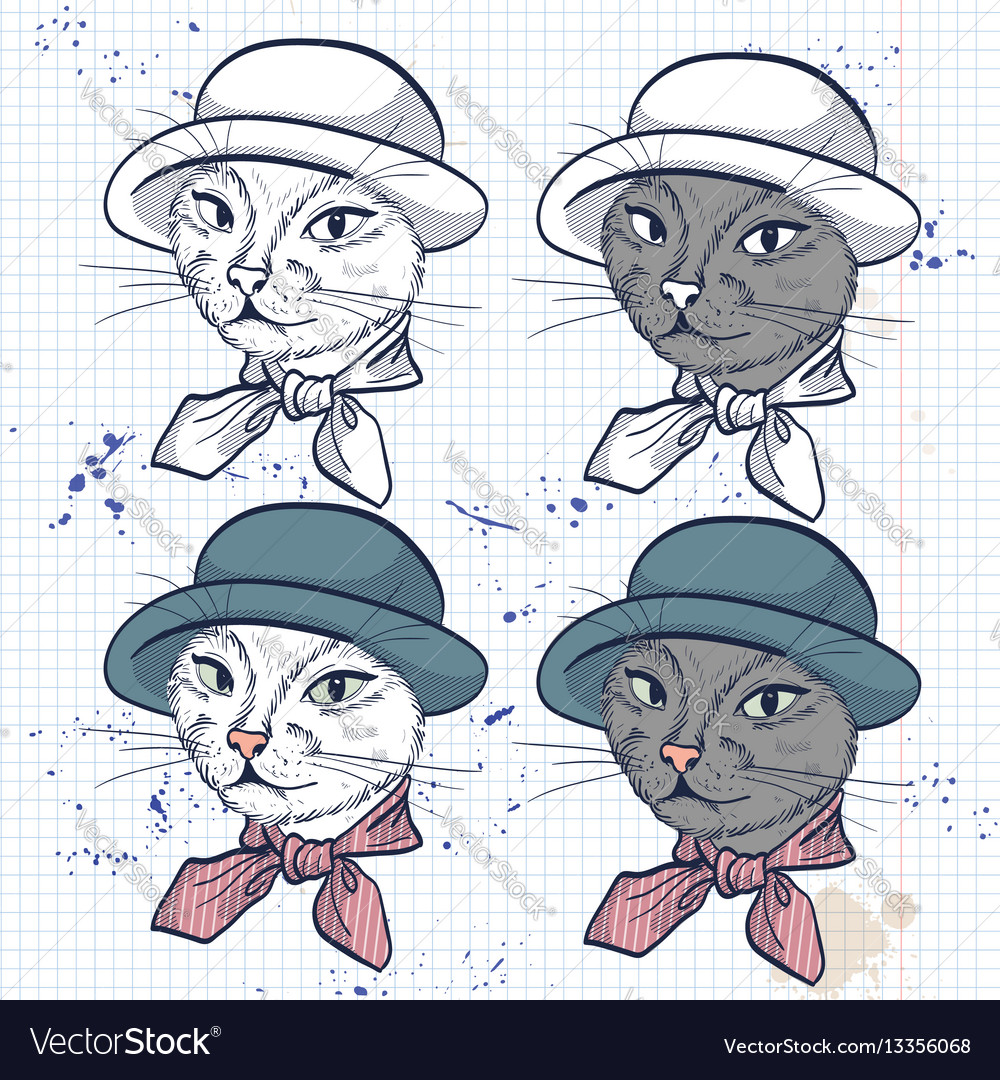 Color set of elegant cat women face