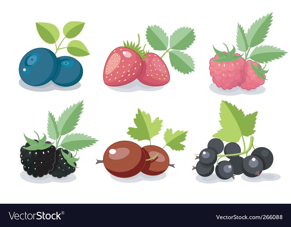 Summer berry set