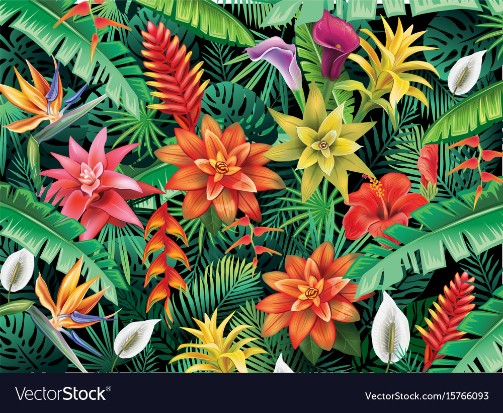 Background From Tropical Flowers Royalty Free Vector Image