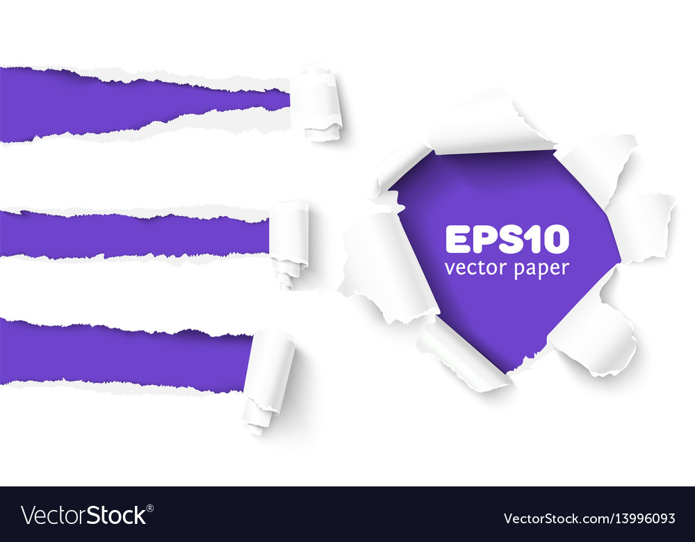 Collection of torn paper vector image
