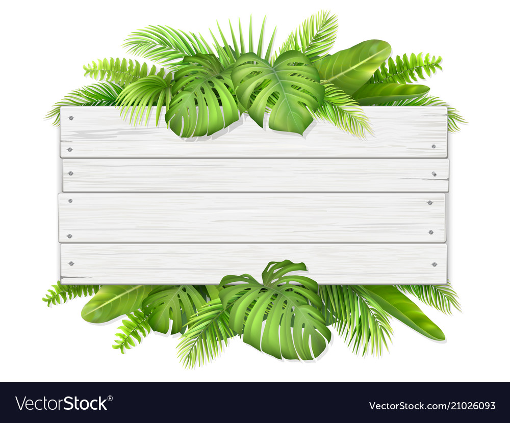 Wooden Sign With Tropical Leaves Royalty Free Vector Image Your favourite piece from our refreshed classic collection? vectorstock