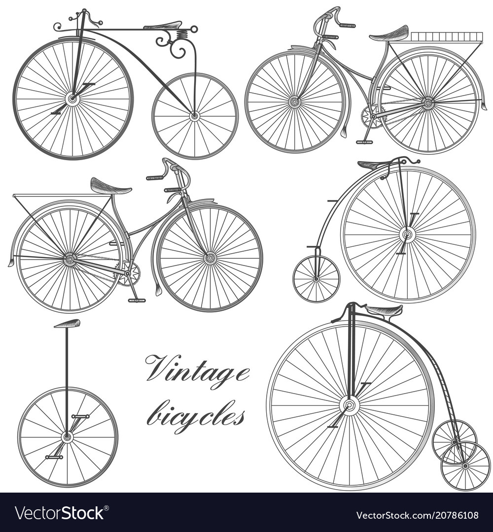 Set of engraved bicycles for design