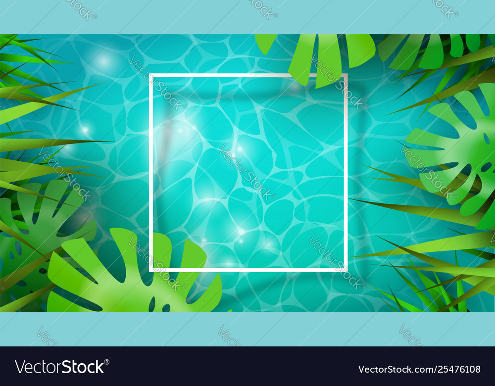Summer background template tropical plants