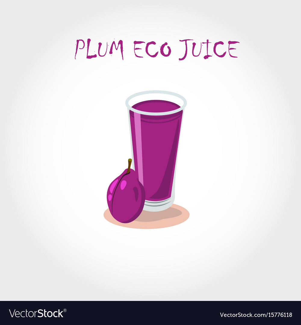 Glass of bio fresh plum juice vector image