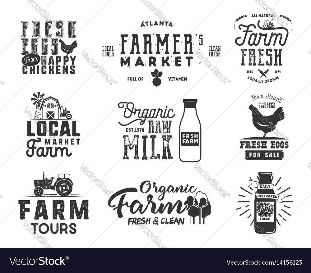 Farmer s market organic food milk and eggs vector image