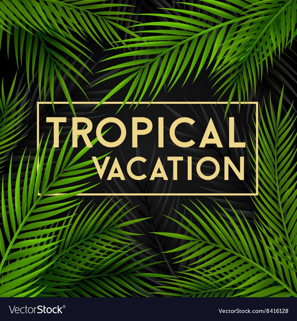 Tropical vacation card with palm leaves