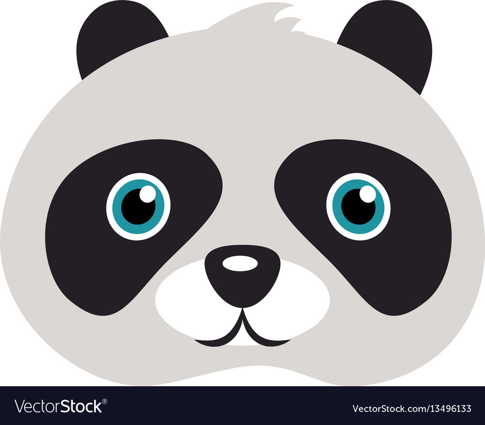 Panda mask bear with black patches round eyes