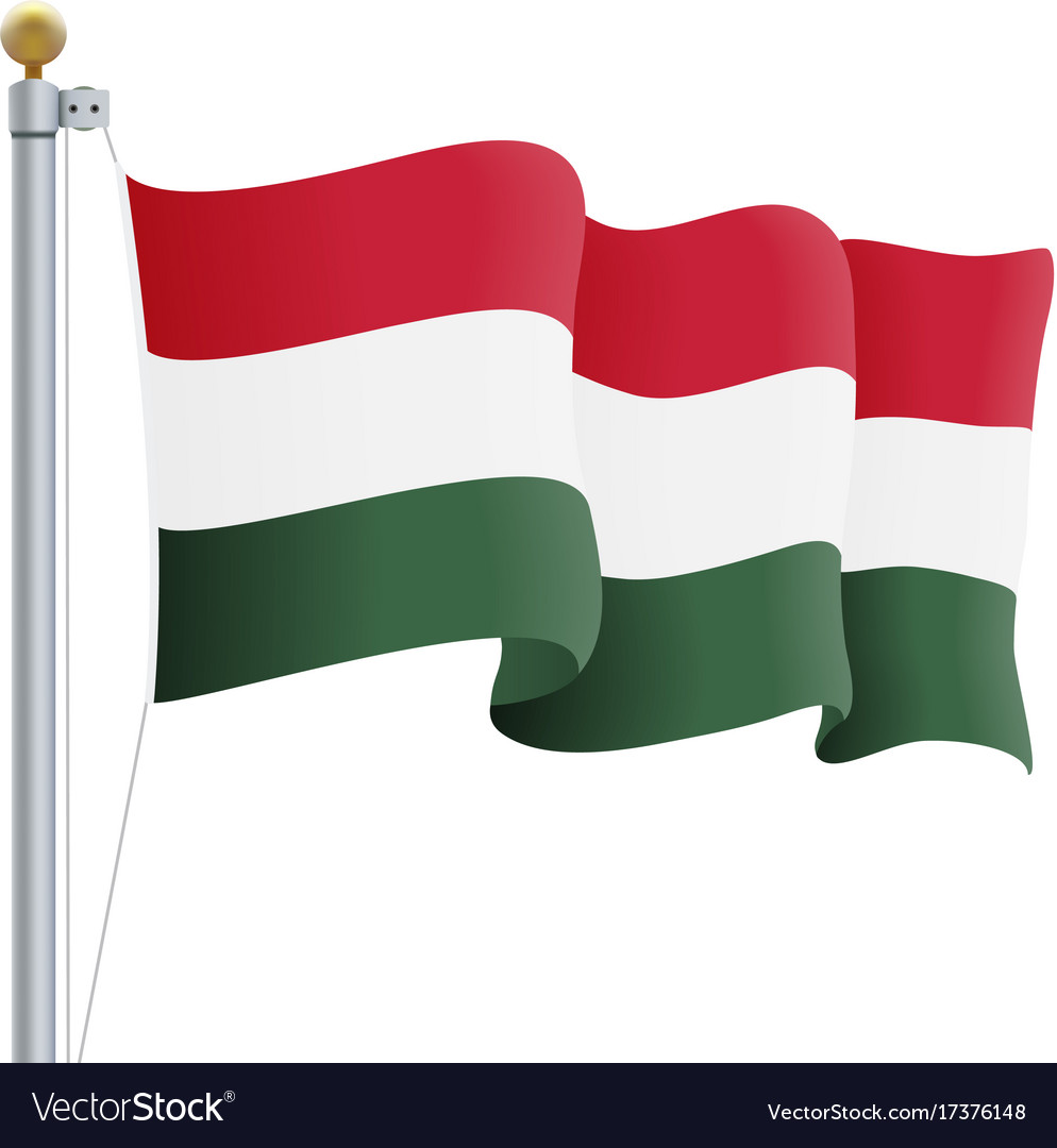 Waving hungary flag isolated on a white background vector image