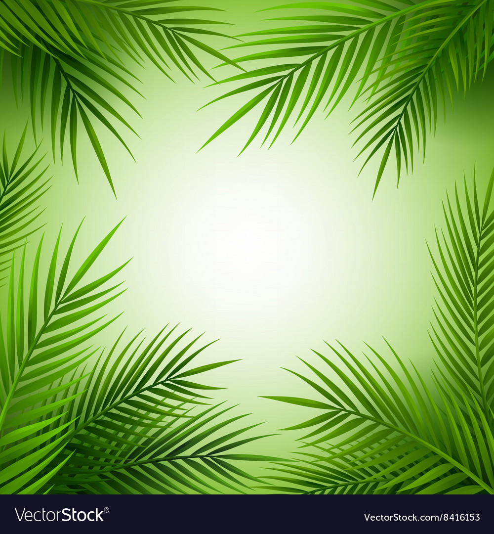 Tropical palm tree frame with copy space