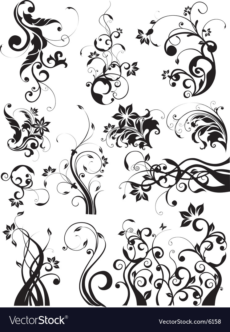 Floral decorative graphic elements vector image