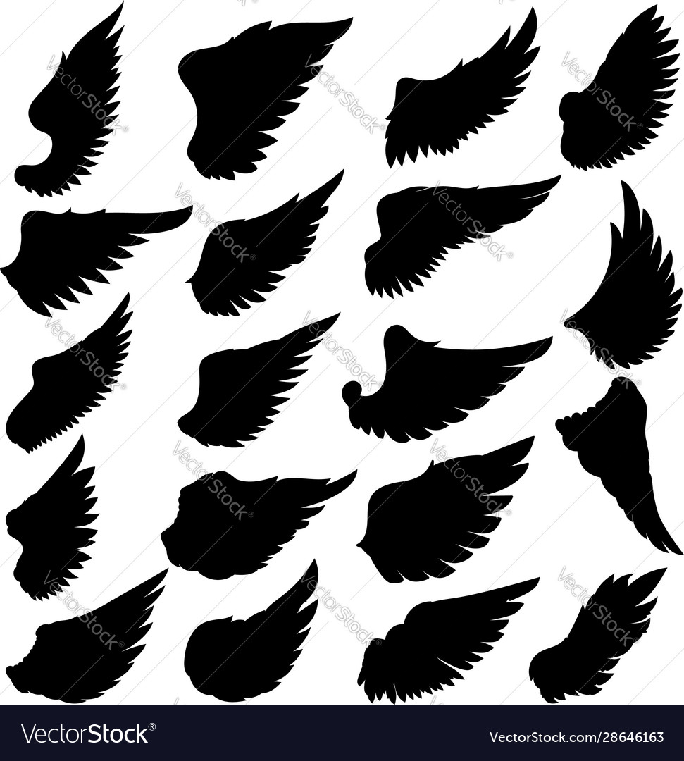 Big set silhouettes wings on white