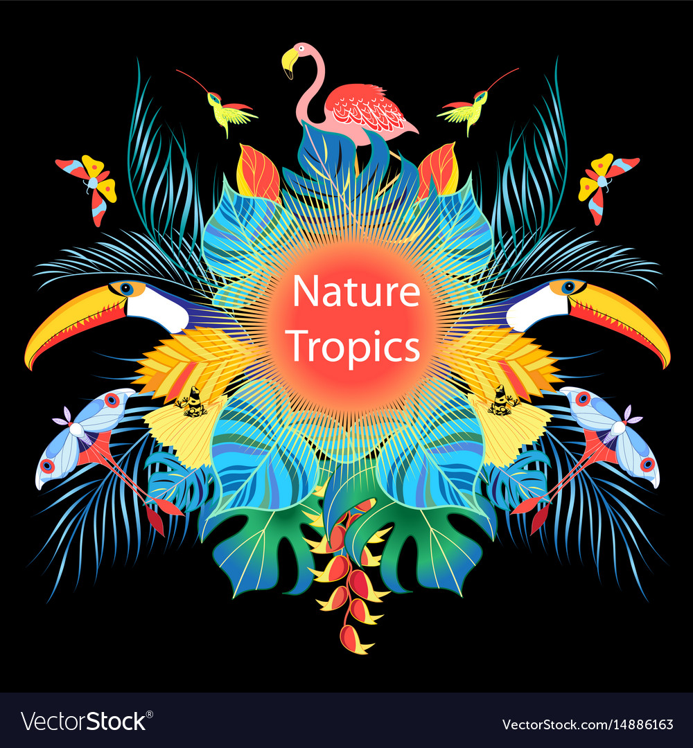 Bright tropical background vector image