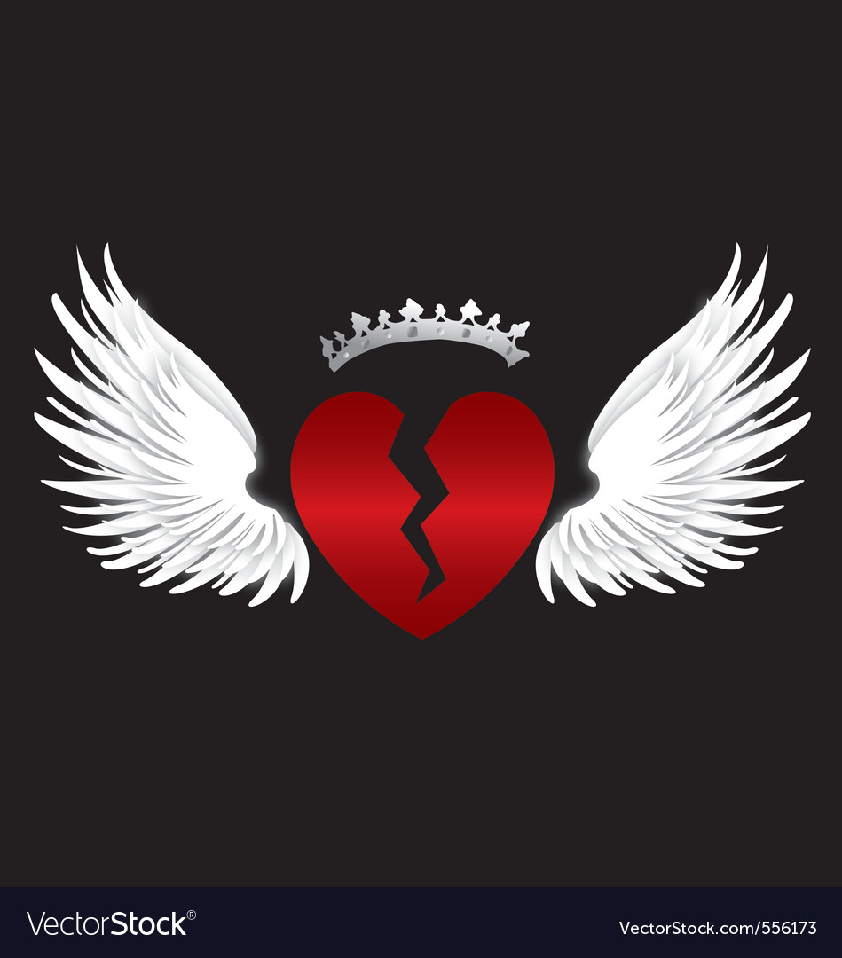 Broken heart wings vector image
