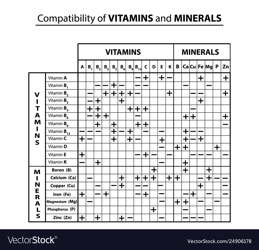 Compatibility Table Vitamins And Minerals With Vector Image