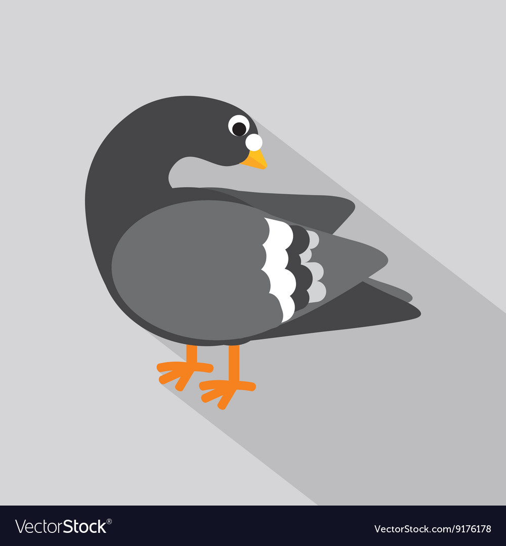 Flat Design Pigeon Icon vector image