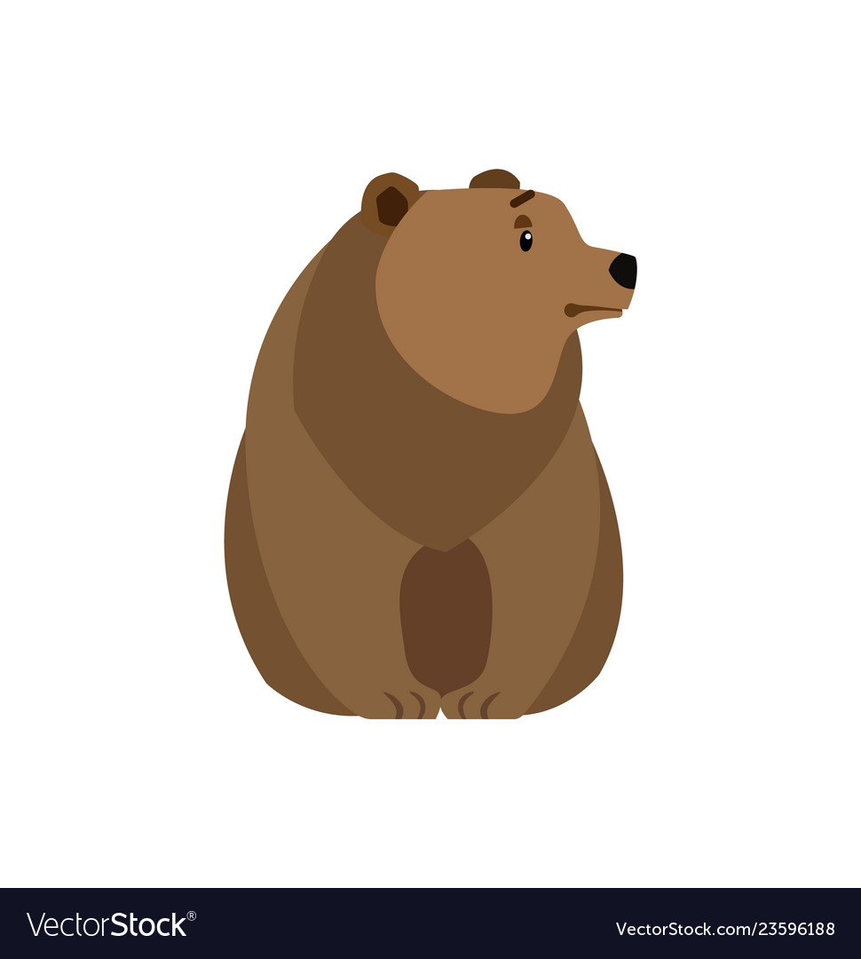 Bear forest animal isolated