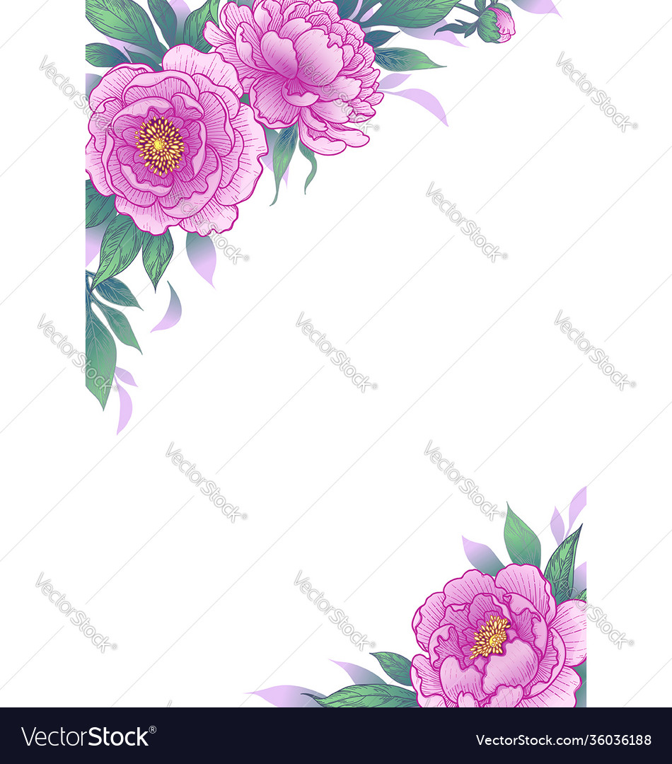 Elegant background with peony flowers vector
