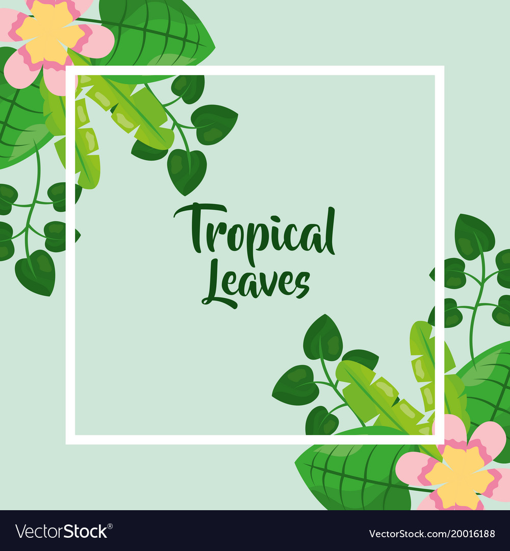 Tropical leaves poster floral flower exotic