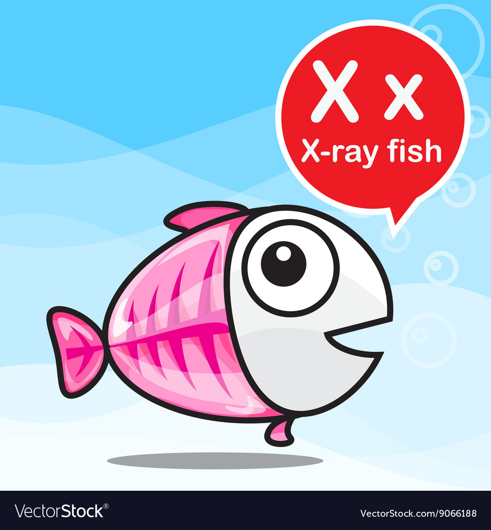 X X Ray Fish Color Cartoon And Alphabet Royalty Free Vector