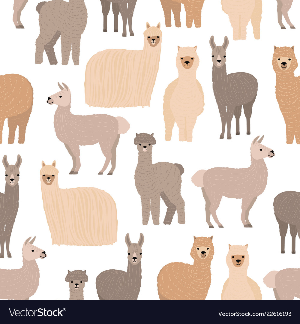 Seamless pattern with cute llamas and alpacas on