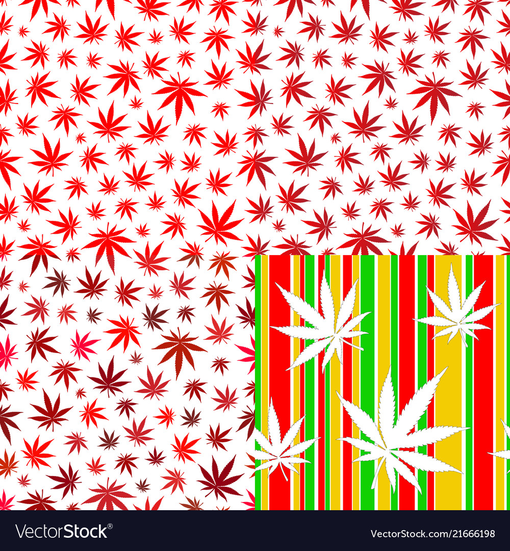 Seamless patterns with cannabis leaves red colour