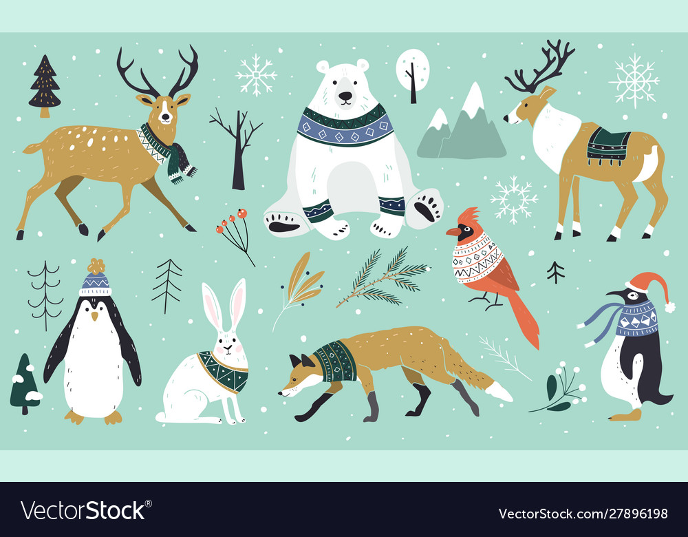 Set christmas animals in forest bear fox
